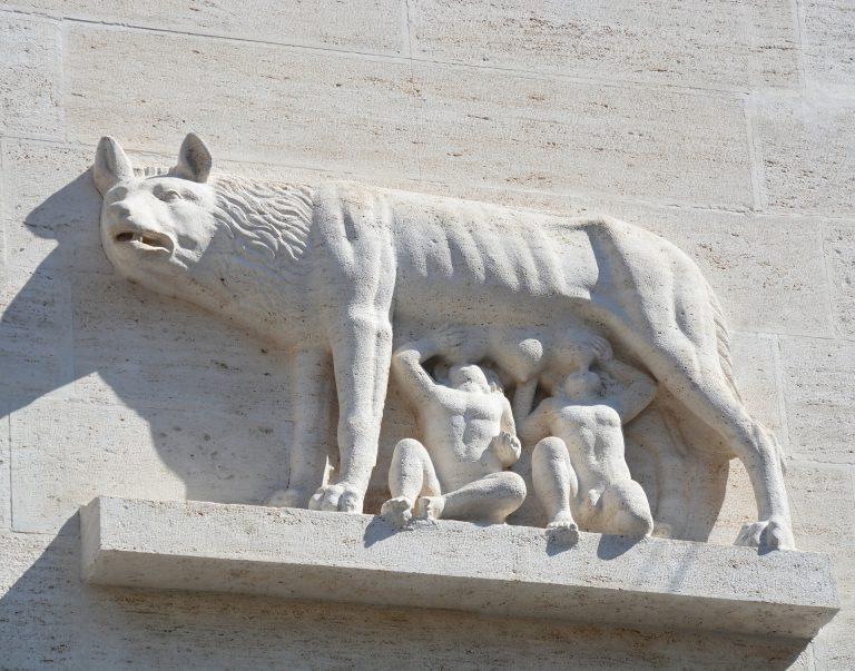 stone romulus wolf